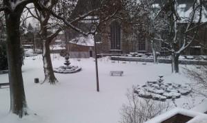 Neige au parc